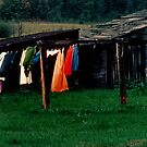 Washday in Michigan by Wayne King