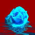 Rose #5 by Trevor Kersley