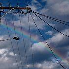 rainbowire by Sandy Sutton