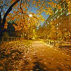 Night and autumn. by Sergieiev