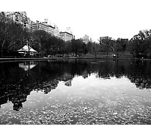 Conservatory Water, Central Park Photographic Print