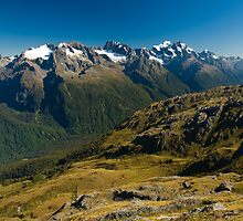scenic view over fiordland by peterwey