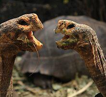 Tortoises by Sue  Cullumber