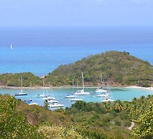 Sail Boats in Mayreau's Harbor by Laurel Talabere