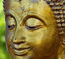 Buddha Face by Dave Lloyd