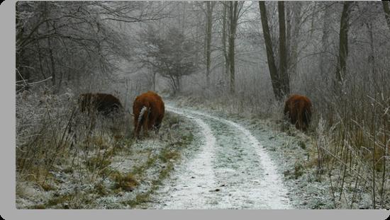 Winter's Survivors by Brendan Schoon
