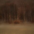 Early Morning Fog by Mary Ann Reilly