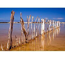 Fish Trap fence Photographic Print