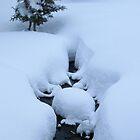 water leak bubble snow by boondockMabel