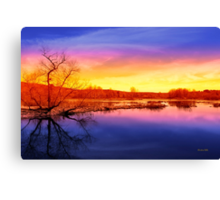 Tranquil Tree Reflection Sunset Canvas Print