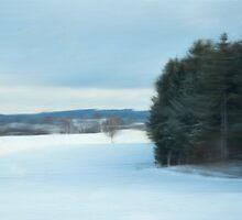 Winter Wonderland by dmark3