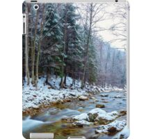 Oltetului river and pass in Romania iPad Case/Skin