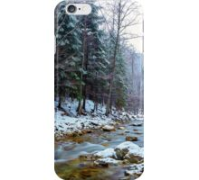 Oltetului river and pass in Romania iPhone Case/Skin