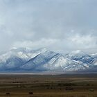 Snowy Mountains by Adrienne Evans