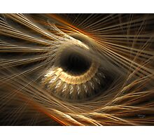 'The Story In Your Eyes' Photographic Print