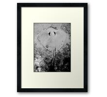 Sand Angel Framed Print