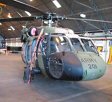 Black Hawk Heilcopter - ARMY  by Waterl00