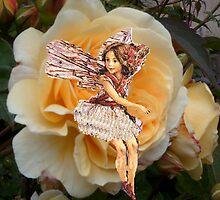 Peach Rose with Fairy by hilarydougill