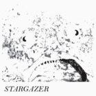 Stargazer by TaiHaku