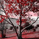 Bloody Tree by CXCBEAR