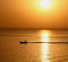 Bon Voyage by Adarsh Ramamurthy