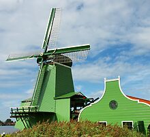 Green Dutch Windmill by Duncan Payne