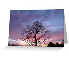 See It With Your Eyes Greeting Card
