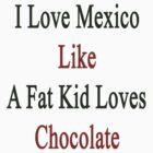 I Love Mexico Like A Fat Kid Loves Mexico  by supernova23