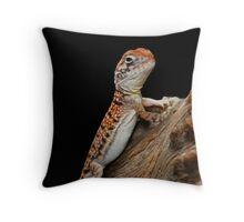 Central Netted Dragon [Ctenophorus nuchalis] Throw Pillow