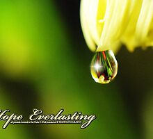 Hope Everlasting by trwphotography