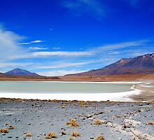 Salar Landscape and Volcanos. by Honor Kyne