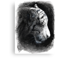 Patience - White Tiger Canvas Print