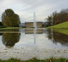 Chatsworth House Canal Pond by Duncan Payne