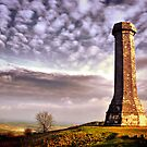 The Hardy Monument by A90Six
