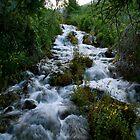 Rushing Water  by Andrew  Landau