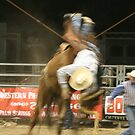 bronco rider flying by aasp