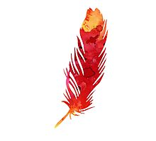 Red abstract feather large poster Photographic Print