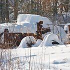 Retired Plow Truck by Carolyn Clark