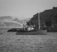 New Zealand Harbor by mvpaskvan