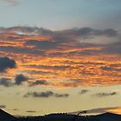 Sunrise December by Julie Sherlock