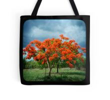 Flame Tree Tote Bag