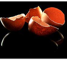 Broken Egg shells by carlosporto