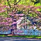White Picket Fence by Flowering Trees by Susan Savad