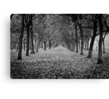 Regent's Park (Black and White) Canvas Print