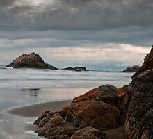 Seal Rock by David Pierce