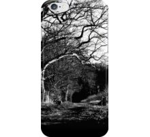 The Path You Choose.  iPhone Case/Skin