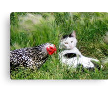 ~ You say chicken/ I say egg! ~ Canvas Print