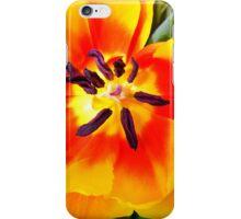 Fading Beauty iPhone Case/Skin