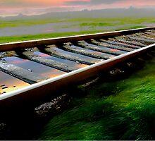 Railway by Igor Zenin