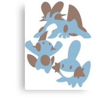 Pokemon Evolution Of Mudkip Canvas Print